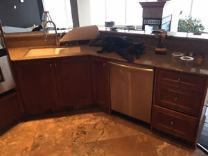 ~Maple Custom Cabinets: MUST SELL!~