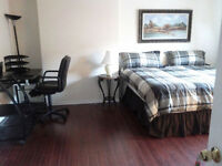 Rent Furnished Room for professional only Quiet, Clean