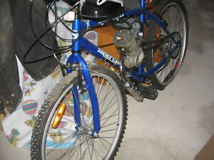 Converted mountain bike with 49cc engine.