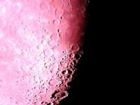 skywatch Telescope