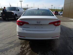 2016 Hyundai Sonata GL $111b/w Edmonton Edmonton Area image 4