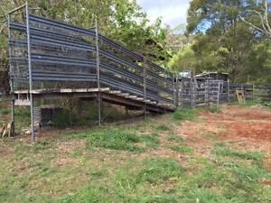 Cattle Ramp & Neck Clamp Obi Obi Maroochydore Area Preview