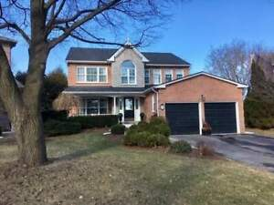 Beautiful Executive Home, 4Br, Gorgeous Renovated Kitchen