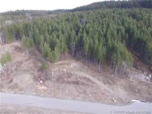 14 Hill-side Acres in North BX, Vernon!