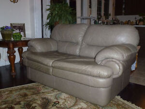 MOVING SALE Furniture, Love Seat, Office Chair,Decor, Plants ...