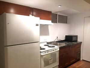 Fully renovated 3 bedrooms' Suite for Rent
