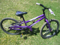 Norco 20 inch Girls bike for sale in Truro.