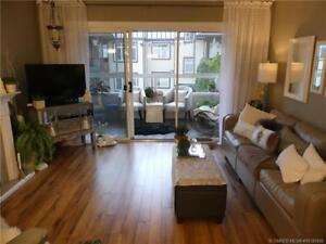 Gorgeously updated condo in desirable Leisure Terrace