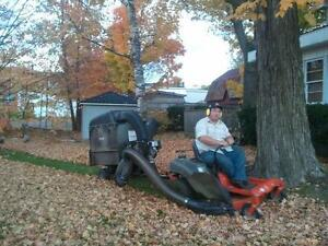 Have your Lawn Vacuumed Belleville Belleville Area image 1