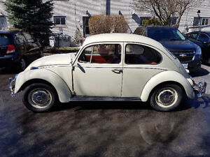 Volkswagen Split Window Bug ! Memorabilia,Signs,Cash Paid