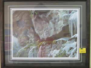 "Robert Bateman "" AT THE CLIFF - BOBCAT "" Print"