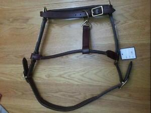 Leather Halters BRAND NEW small and cob size with brass plates o Kitchener / Waterloo Kitchener Area image 2