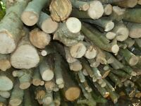 Seasoned Lengths of Mixed Hardwood or logs Collection Only