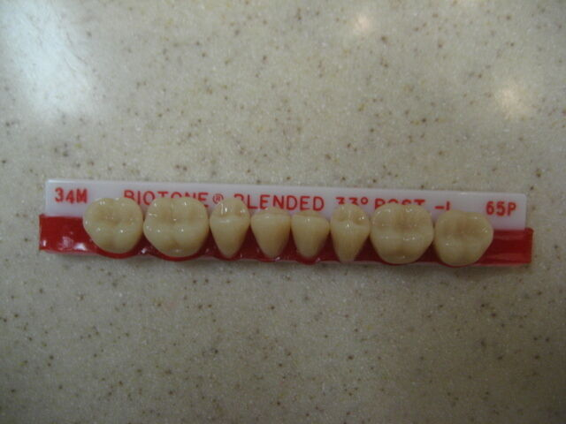 Dentsply Denture Trubyte BioTone 33° Lower Posterior Mould 34M / 65P