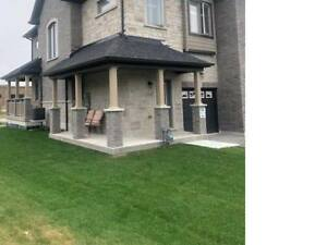 Luxury Town House  3 bedrooms & 3 bath for rent in ardagh barrie