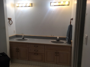 bathroom cabinets and sinks light colored - Bathroom Cabinets Kelowna