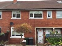 3 bedroom house in Crumwell Rd, Rotherham, S61 (3 bed)