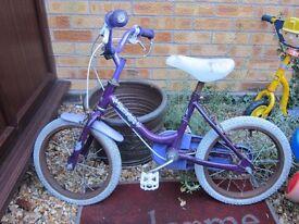 Girl child Raleigh bike kid 14inch wheel