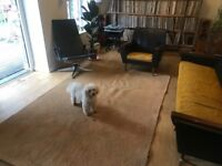 Large coir rug