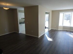 3 bedroom House in Eastend of guelph $1695 plus