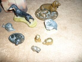 Odds and Sods of Dogs 'n' stuff.