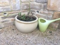 Are you ready for spring - large ceramic garden pots