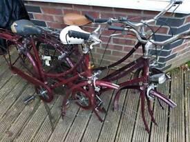 Raleigh caprice bike frames
