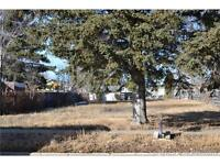 Vacant Lot 806 2 St SE, Redcliff - $65,000