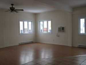 Spacious apt. Downtown Hull Centre- Ville