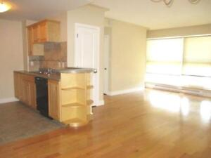 17-058Ideal for anyone working in Halifax or Bedford! Condo!