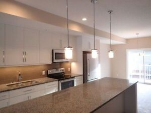 Brand New 124 Street 3 beds & 2.5 bathroom townhouses FOR RENT