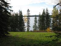 Bridge Lake Waterfront Lot
