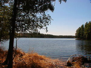 3 BDRM  HOME+COTTAGE+492 FEET OF WATERFRONT ON  WHITE LAKE!