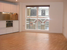 Luxury modern spacious studio apartment with amazing large bathroom in Islington N1