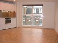 Luxury modern spacious studio apartment with amazing large bathroom in Islington N1