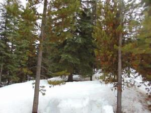 Lot For Sale in Mile High Resort, Logan Lake BC