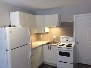 Renovated Bachelor, FREE Utilities, FREE Cable & Internet