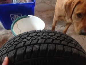 """14"""" Arctic Claw tires and rims - nearly new"""