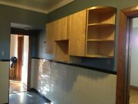 Wall Mounted Kitchen Cabinet