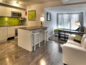 Beautifully Furnished 1BR STUDIO All Inclusive In Downtown