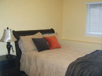1 BEDROOM APARTMENT - Riverview - Utilities Included!