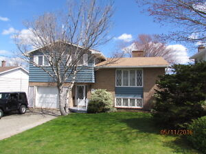Move in Ready - Spotless 4 Level side split- 38 Brookfield Ave
