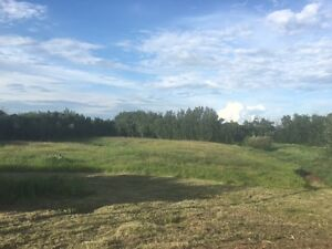Two Hills Acreage For Sale