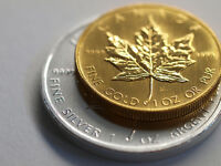 Trading Gold for Silver! Maples, Eagles, Krugerrands, Bars Coins
