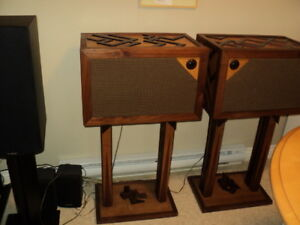 nice pair of hand made speakers
