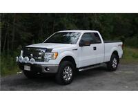 2013 Ford F-150 XLT *REDUCED*