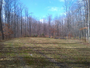 Country sized lot 15 minutes from Waterloo