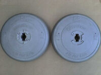 44 lb 20 Kg Dumbbell Weights - Heathrow