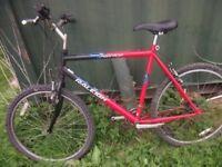 Mens mountain bike wanted nothing fancy