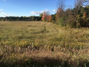 1.1 Acre Building Lot - Puslinch Township